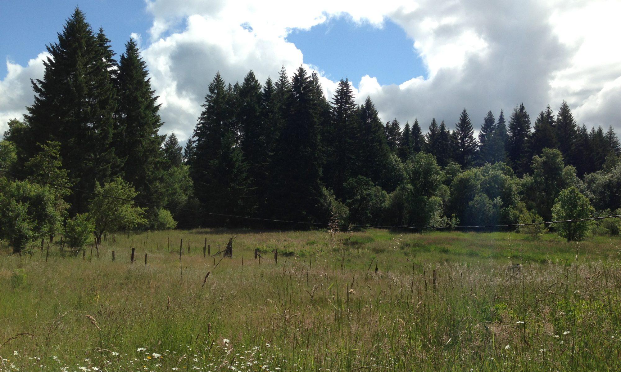 Everfree Farm